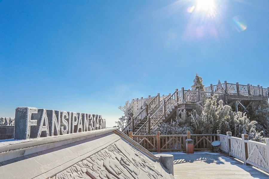 Hình ảnh băng giá trên đỉnh Fansipan vào mùa đông